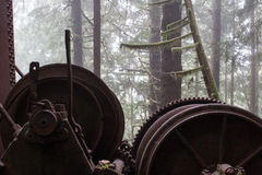 La naturaleza resuelve la máquina Imagen de archivo libre de regalías
