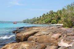 La naturaleza tropical Foto de archivo libre de regalías