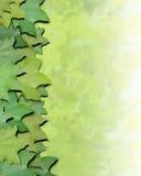 La naturaleza verde sale de la frontera Imágenes de archivo libres de regalías