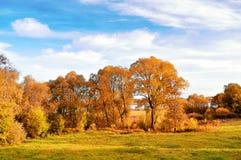 La nature d'automne paysage-a jauni des arbres d'automne par temps ensoleillé d'automne Photo libre de droits