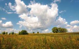 La nature dans une heure d'été Image libre de droits