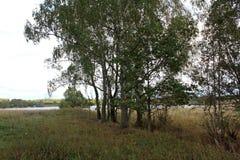 La nature de la Russie centrale, au début de l'automne Excellente illustration photographie stock libre de droits