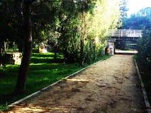 La nature fleurit en parc linéaire de Nicosie en Chypre Image libre de droits