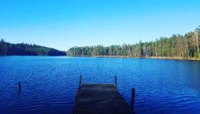 La nature forrest de paysage de la Suède de lac Image libre de droits