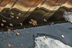 La nature rencontre synthétique Photo libre de droits