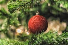 La Navidad adornó la bola brillante roja en el árbol de navidad Foto de archivo libre de regalías