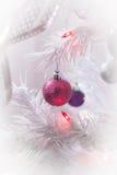 La Navidad blanca Fotografía de archivo