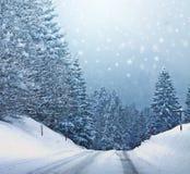 La Navidad blanca en el bosque, textura del libro de recuerdos Fotos de archivo libres de regalías
