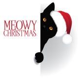 La Navidad de Meowy que mira a escondidas el fondo del gato Foto de archivo libre de regalías