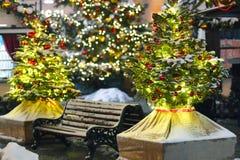 La Navidad del Año Nuevo de la nieve del árbol juega el invierno de Moscú Imagen de archivo