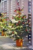 La Navidad del Año Nuevo de la nieve del árbol juega el invierno de Moscú Fotos de archivo
