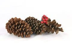 La Navidad del cono del pino Imágenes de archivo libres de regalías