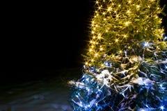 La Navidad del fondo y noche del árbol de abeto del Año Nuevo con las luces Imagen de archivo libre de regalías