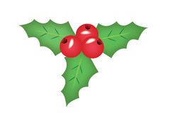 La Navidad del muérdago Imagenes de archivo