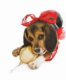 La Navidad del perrito foto de archivo libre de regalías