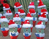 La Navidad en el desierto. foto de archivo libre de regalías