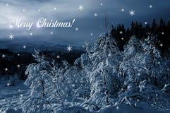 La Navidad en el país de las maravillas del invierno Foto de archivo libre de regalías