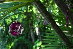 La Navidad en la isla Imagenes de archivo