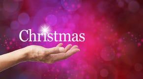 La Navidad en la palma de su mano Imagen de archivo libre de regalías