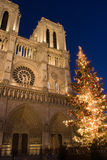 La Navidad en Notre Dame Fotos de archivo libres de regalías