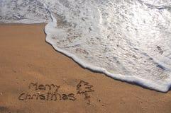 La Navidad exótica Foto de archivo
