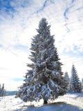 La Navidad Fondo del Año Nuevo Vacaciones de invierno Imágenes de archivo libres de regalías
