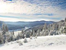 La Navidad Fondo del Año Nuevo Vacaciones de invierno Fotografía de archivo