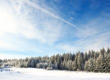 La Navidad Fondo del Año Nuevo Vacaciones de invierno Foto de archivo