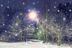 La Navidad Los copos de nieve están cayendo en parque del invierno Nevadas en el bosque por Año Nuevo Año Nuevo y tarjeta de Navi Imagenes de archivo
