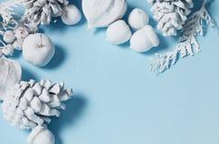 La Navidad minimalista conceptual del inconformista y contexto del Año Nuevo Conos del pino, ramas, flores del physalis Objetos b Imagen de archivo