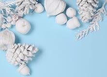 La Navidad minimalista conceptual del inconformista y contexto del Año Nuevo Conos del pino, ramas, flores del physalis Objetos b Foto de archivo libre de regalías