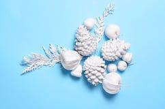 La Navidad minimalista conceptual del inconformista y contexto del Año Nuevo Conos del pino, ramas, flores del physalis Objetos b Fotografía de archivo