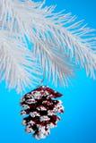 La Navidad Pinecone Foto de archivo libre de regalías