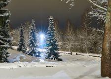 La Navidad que iguala paisaje en el cementerio viejo foto de archivo libre de regalías