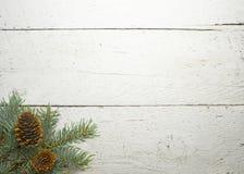 La Navidad resistida blanco Imágenes de archivo libres de regalías