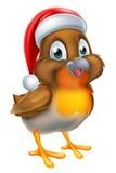 La Navidad Robin Bird en Santa Hat roja Foto de archivo libre de regalías