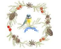 La Navidad wreath1 Fotografía de archivo