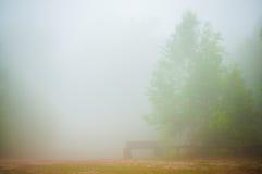 La nebbia Immagini Stock