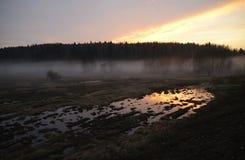 La nebbia Immagine Stock