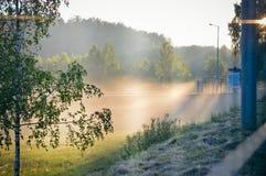 La nebbia di sera Fotografia Stock