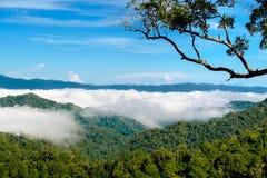 La nebbia a Khao Phanoen Thung, parco nazionale di Kaeng Krachan in Th Fotografie Stock Libere da Diritti