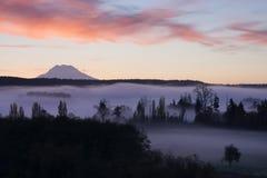 La nebbia riempie la valle di Nisqually prima che supporto della luce di mattina dell'alba fotografia stock