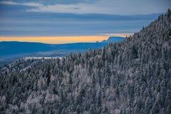 La nebbia selvaggia innevata del New Mexico ha coperto il paese delle meraviglie dell'inverno delle montagne Fotografia Stock