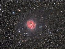 La nebulosa del capullo Foto de archivo libre de regalías