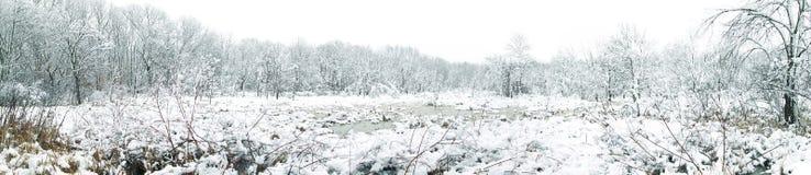 La neige blanche a couvert le panorama en bois Image stock