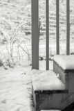 La neige a couvert des étapes Photo stock