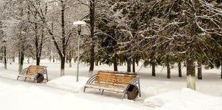 La neige a couvert des arbres et les bancs dans la ville se garent Image libre de droits