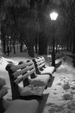 La neige a couvert des bancs Photographie stock