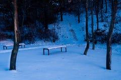 La neige a couvert des bancs de parc en parc public Photographie stock