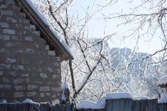 La neige a couvert des branches d'arbre au-dessus du toit neigeux photographie stock libre de droits